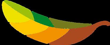 logo_hoja_edited.png
