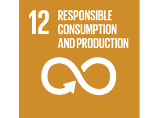 VINVENTIONS FULLY EMBRACES THE UNITED NATIONS SUSTAINABLE DEVELOPMENT GOALS