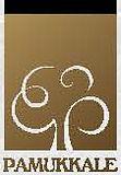 Pamukkale Logo.jpg