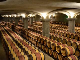 Fransız Araştırmacılar Şarap Acılığının Bir Sırrını Açığa Çıkarıyor: Meşe Fıçıları