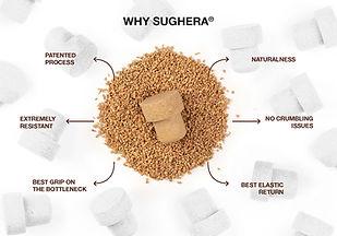 WHY SUGERA .jpg
