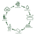 nomacorc-green-line-cycle.png
