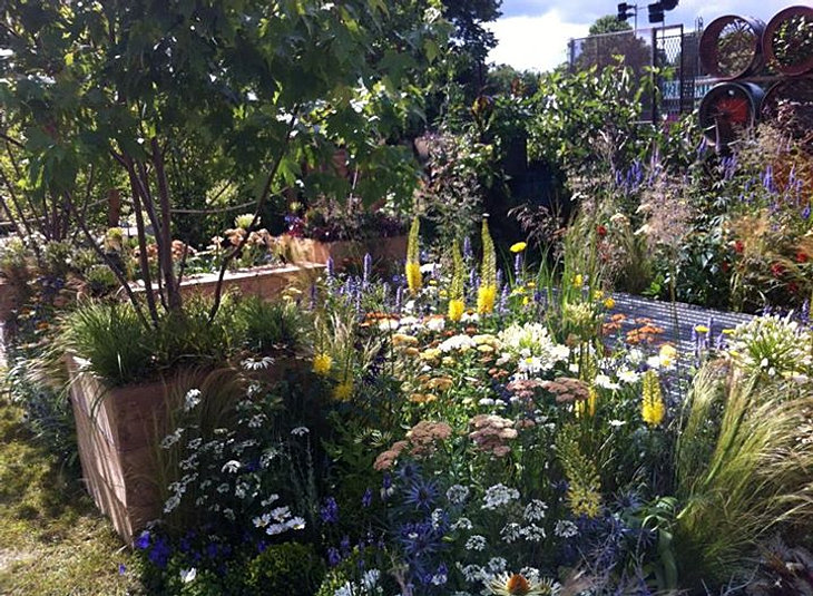 Jeni CairnsJuniper house garden designPeterborough