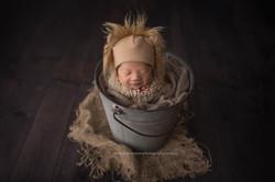 Gorgeous Lion theme newborn