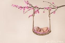 baby on cherry blossom swing