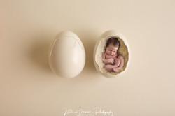Newborn in egg