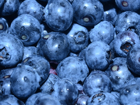 Mexican blueberries gain U.S. market share