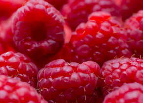 Raspberry prices rising again