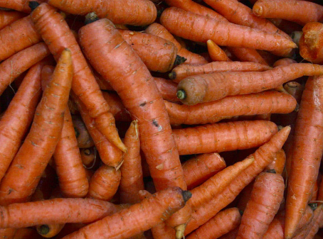 Volume, prices both up for carrots