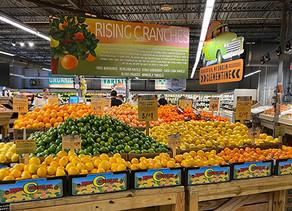 Citrus exporters find hot U.S. market