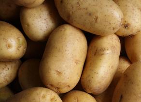 Idaho potatoes' dominance in charts