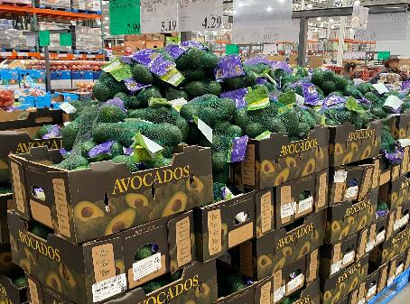 Avocado market enjoys strong volumes