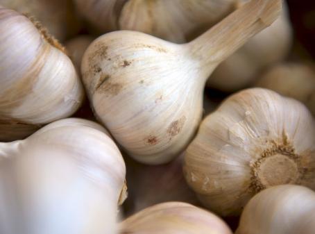 Garlic demand on the rise