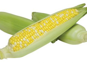 Sweet corn prices settle down