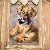 BB015 - Personalised Portraits of Pets €90
