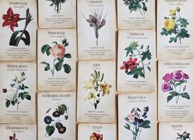Botanical Inspirations Deck