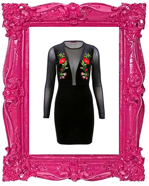 Mesh Embroidered Long Sleeve Dress