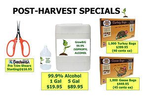 Harvest Specials @ GrowBIGogh