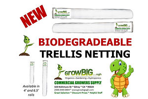 Biodegradeable, Commercial Grade Plant T