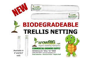 Biodegradeable, Commercial Grade Plant T