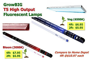 T5 Fluorescent Lamp SALE _ GrowBIGogh