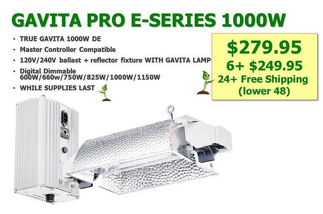 Gavita Pro 1000 279 web.jpg