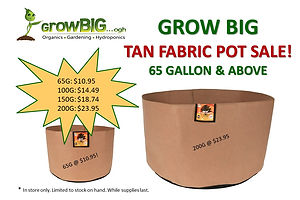 Fabric Pot Sale