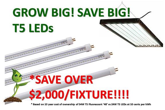 T5 LEDs at GrowBIGogh 202008.jpg