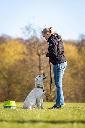 026 Dygtighund.nu (104 of 157)-april 27,