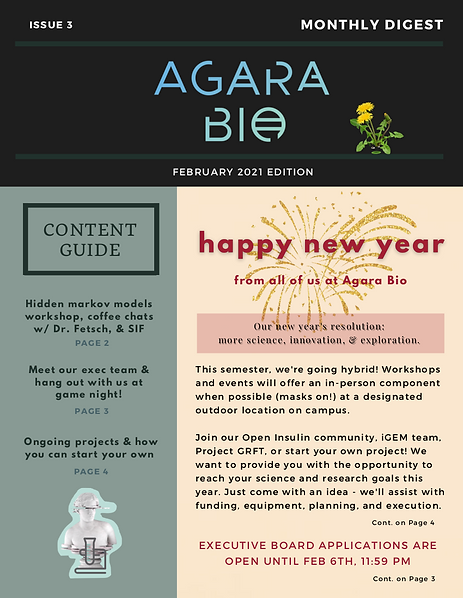 feb newsletter p1.png