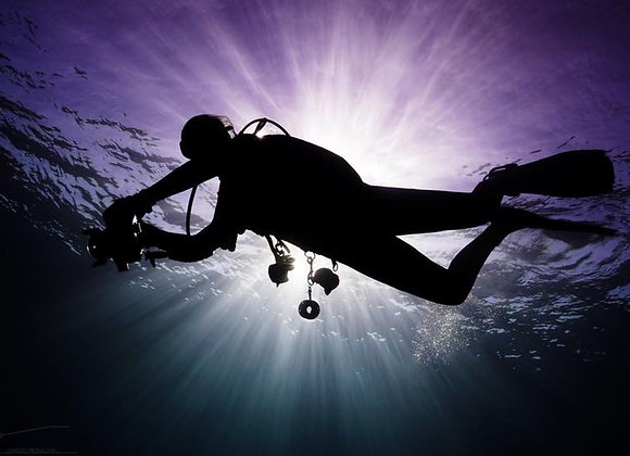 Underwater photographer and videographer private service
