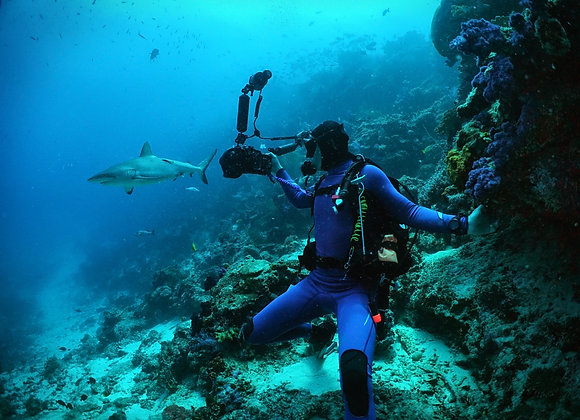 Underwater diving photographer private service with finished pictures