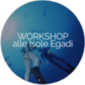 workshop Egadi1.png