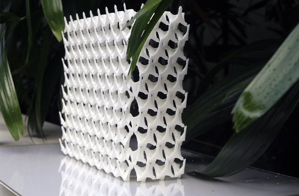 Trivoid 3D Model Perspective