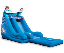 16ft dolphine water slide