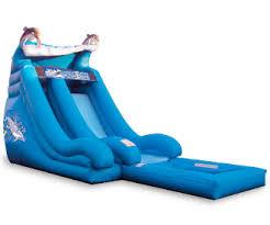 dolphine water slide.jpg