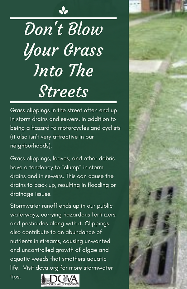 Don't Blow Your Grass Into The Streets.p