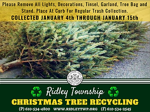 ChristmasTree_Recycle.png