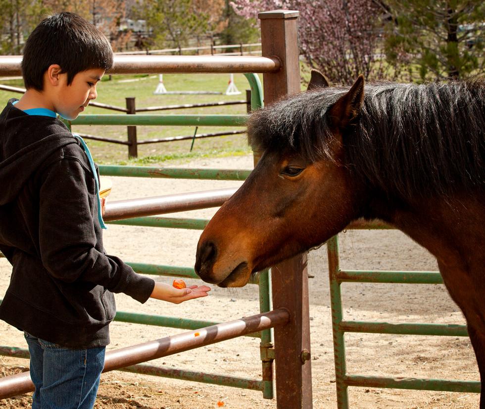 Reno Riding_Camp Day040.jpg