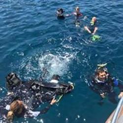 boat dive 3