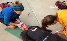 Paramedic Training Course