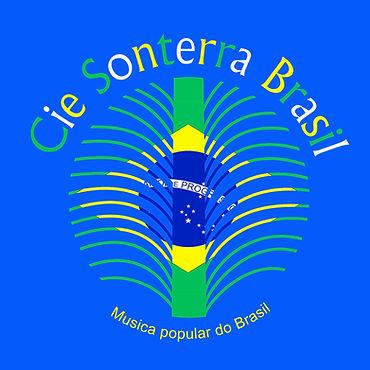 logo sonterra couleur colorise bandeira