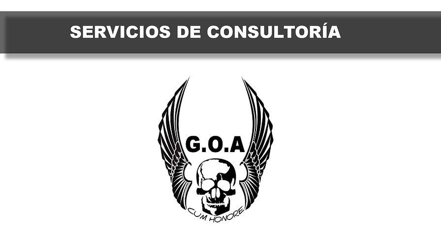 CONSULTORIA-GOA-001.jpg