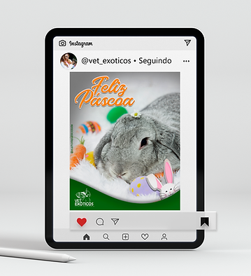 Mockup Tablet Vet Exóticos 14.png