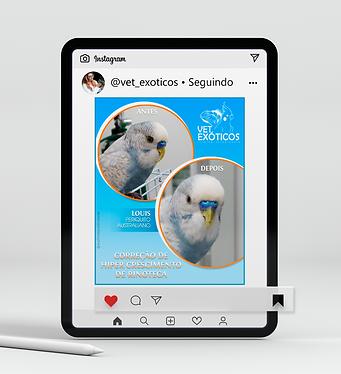 Mockup Tablet Vet Exóticos 4.png