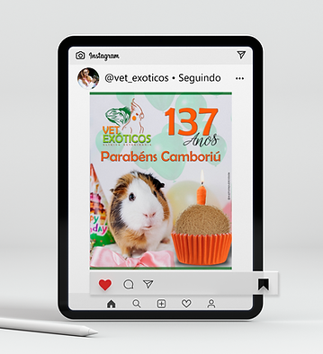 Mockup Tablet Vet Exóticos 8.png