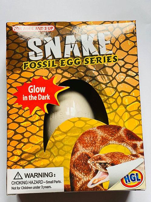 Snake Fossil Egg