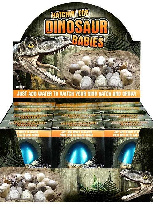 Dinosaur Baby Hatching Egg