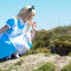 Rabbit princess