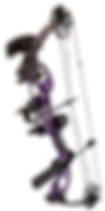 radical_ap_purple_pkg_website.png
